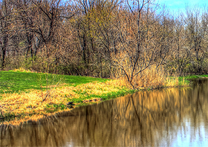 A wooded area next to a lake representing the environmental engineering services of Encorus Group in Springville, NY
