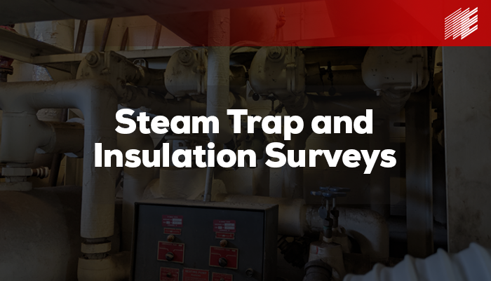 Steam Trap and Insulation Surveys